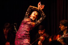 The best flamenco to honour Indian Leaders